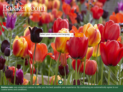 Bildschirmfoto für Bakker.com